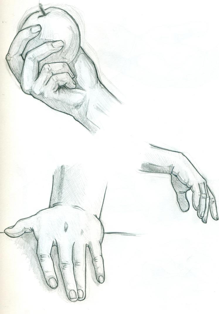 Hand Anatomy Practice by Eyad-mangafreak on DeviantArt