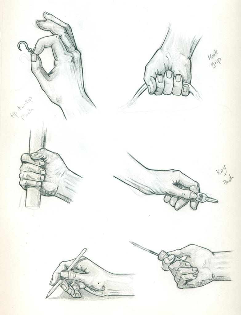 Hand Anatomy Practice by Eyad-mangafreak on DeviantArt