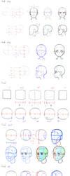 HEAD  STUDY by TRYLSC