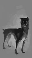 A dogger