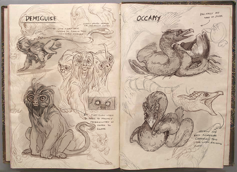 A Field Guide to The Demiguise and The Occamy