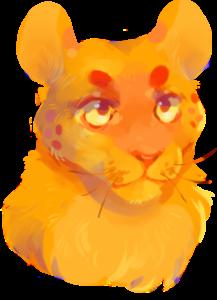 finxh's Profile Picture