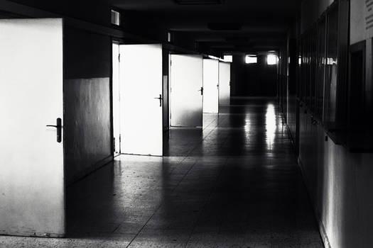 light echoes 3
