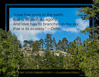 Roots and Branches of Love by Izzie-Kikue
