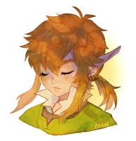 loz -- Sleepy Link by onisuu