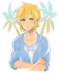 wind waker -- island boy