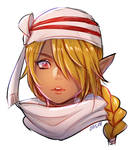 hyrule warriors -- sheik