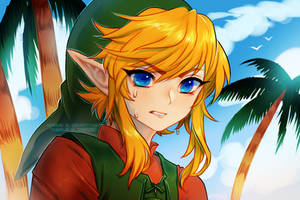 Link's Awakening * video by onisuu