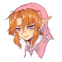 LOZ -- Pink Link