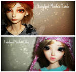 My BJD Children