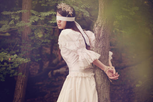 Dark Fairytale Series