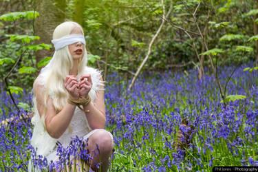 A Twisted Fairytale by PhilJonesPhotography