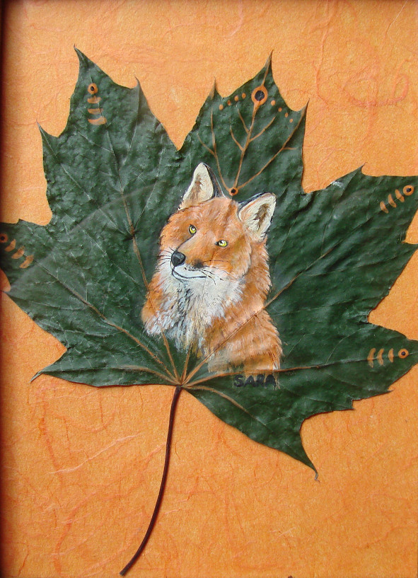 Red Maple Fox by SpottedNymph