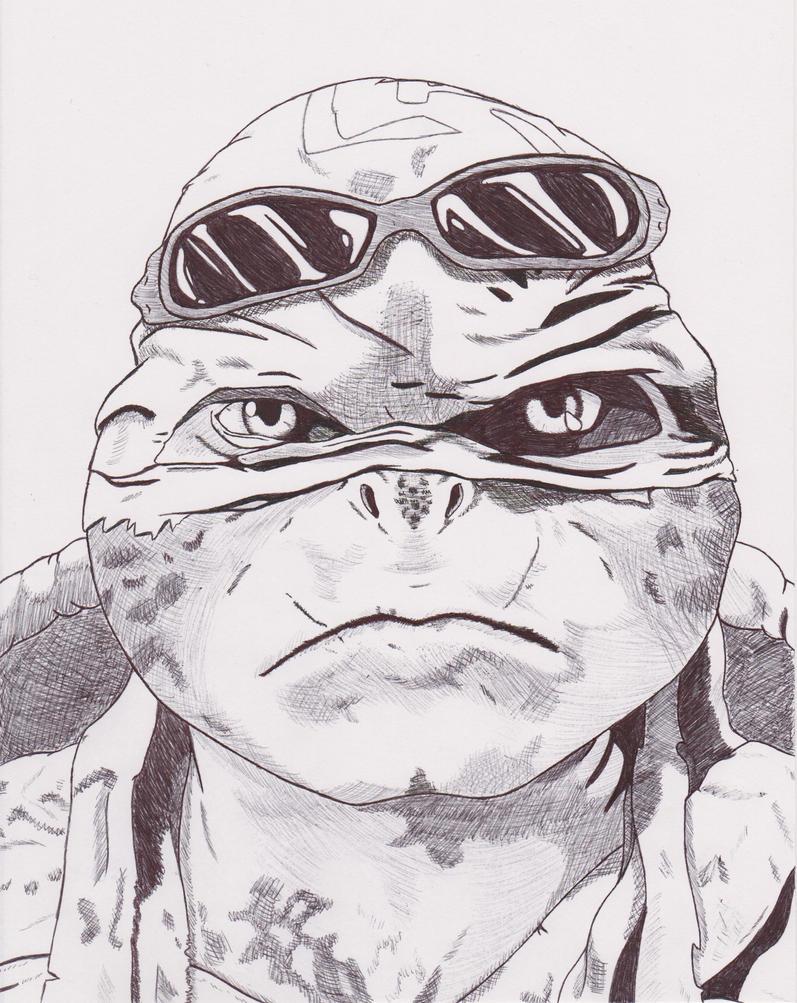 Raphael by nightcat17