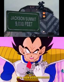Vegeta at Jackson Summit
