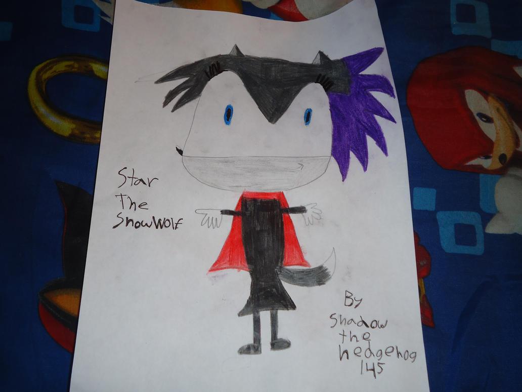 Star The SnowWolf by shadowthehedgehog145