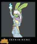 PKMC: Skyrim Meme