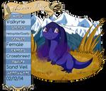 PKMNation: TR - Valkyrie