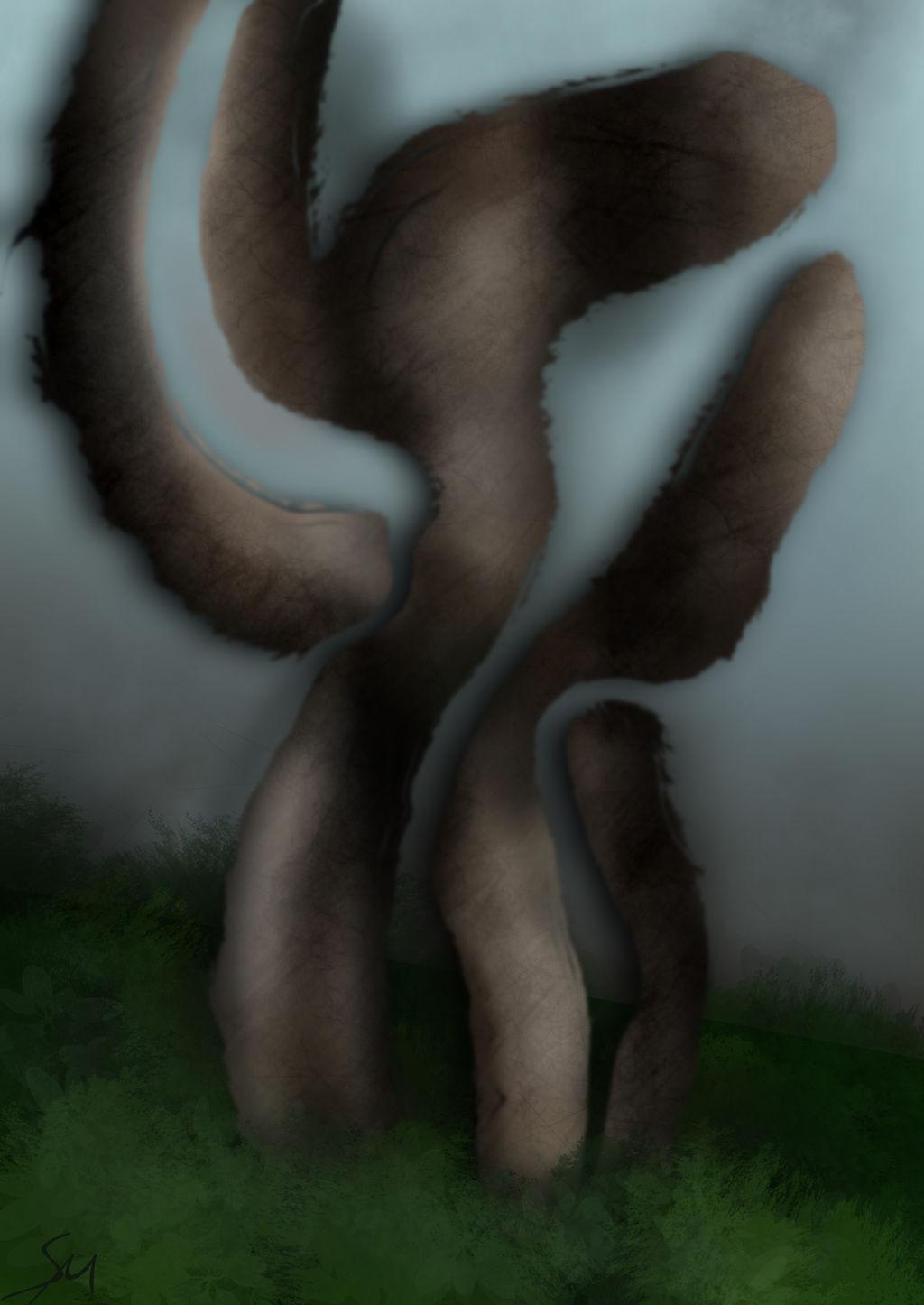 Fallen Twig
