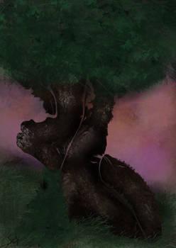 Tree Sunset 001