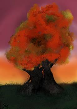 Tree Sunset 002