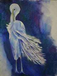 Egret by Sisyphus-Child