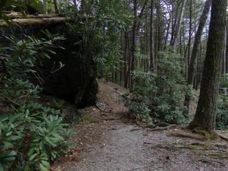 Russian Trail