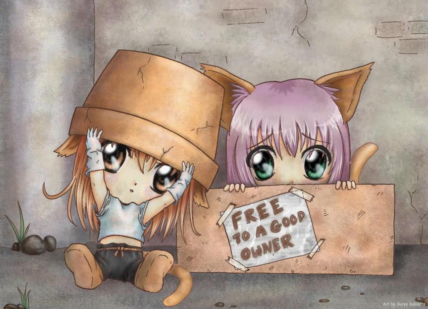 http://fc42.deviantart.com/fs7/i/2005/218/5/1/Adopt_a_neko_by_Serio555.jpg