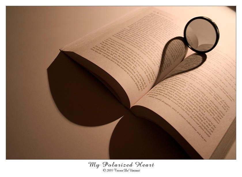 My Polarized Heart by yourmetaphor