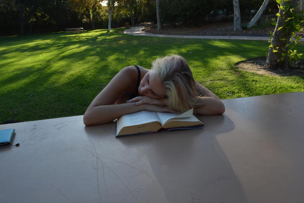 Reading in the Park 5 by Ceridwynne