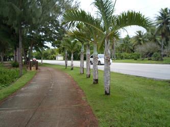 Nov Saipan 2013 005 by dnalrednow-ecila