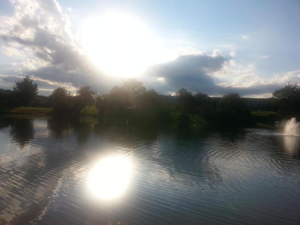 Reflection of the Sun by GoddessSpiritwolf