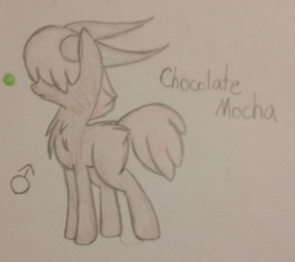 Chocolate Mocha ref by Equinoxthealicorn