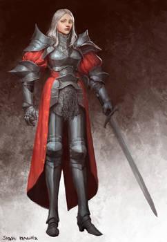 Knight Captin