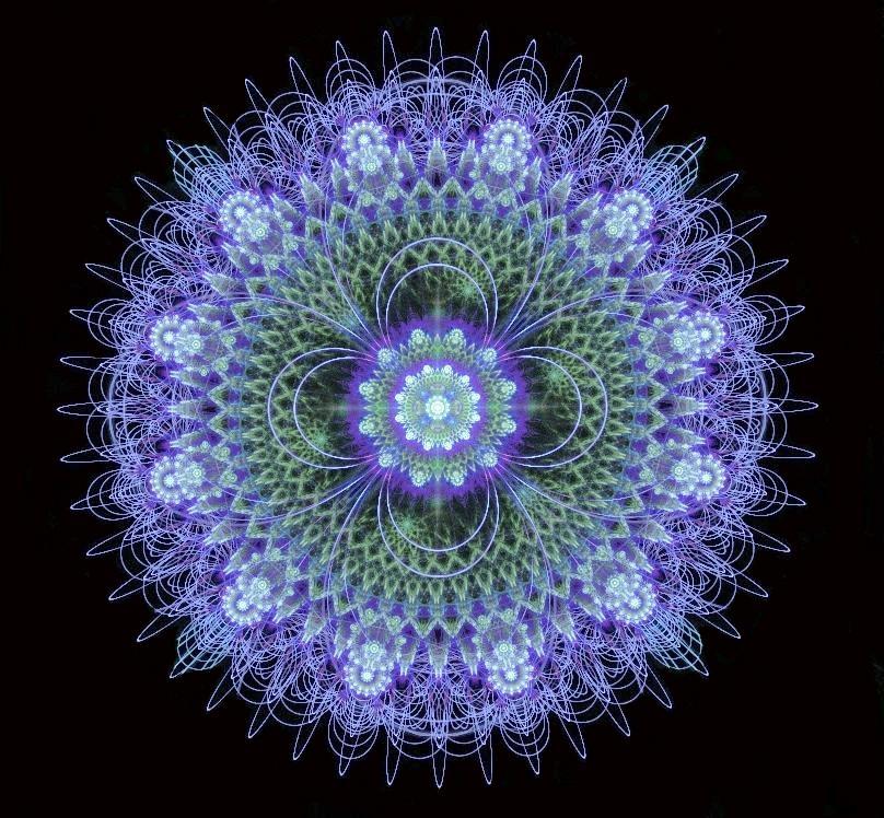 Violets Returning by Peekeeboo