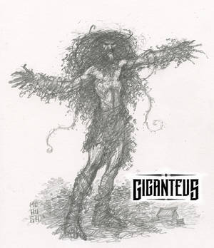 Giganteus--Tall Tree sketch