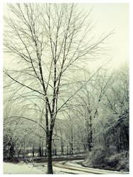 December Lane by halfpastoctober