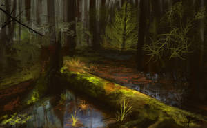 Forest Swamp by jjpeabody