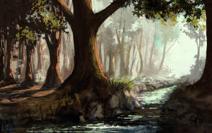 Enchanted Woods by jjpeabody