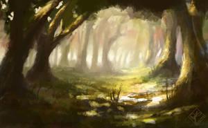 Forest Light 2 by jjpeabody