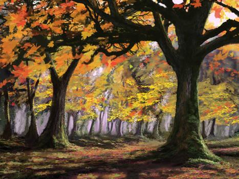 The Autumn Grove