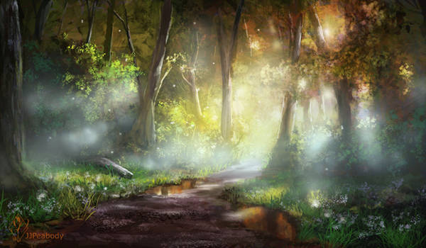 Early Morning Forest Path