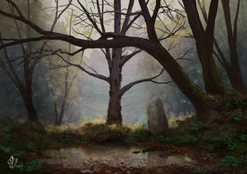 Ancient Tree by jjpeabody