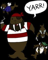 Pirate Walrus by Teh-Lady-Randomness
