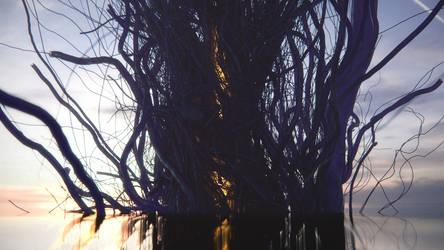 Tree by Djebrayass