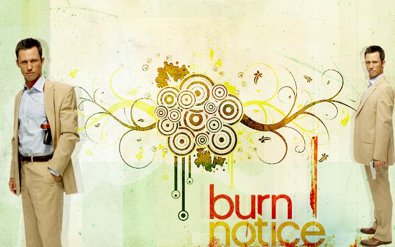 Hot females in burn notice