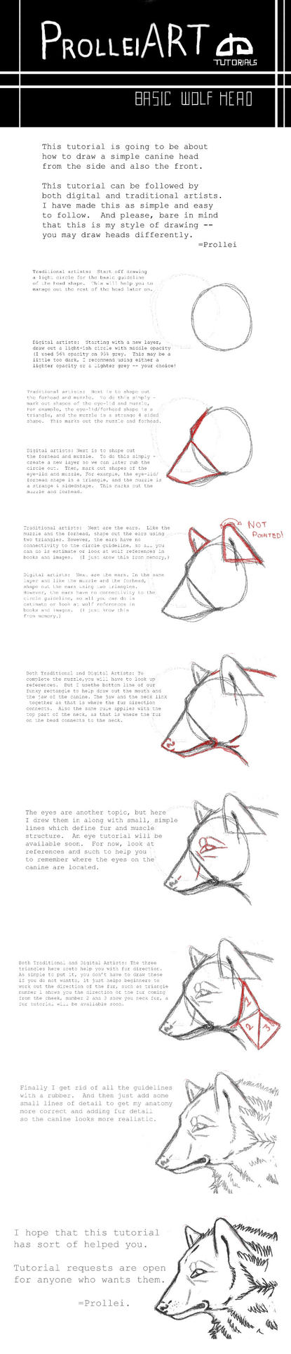 Basic wolf head tutorial by Slickbrush