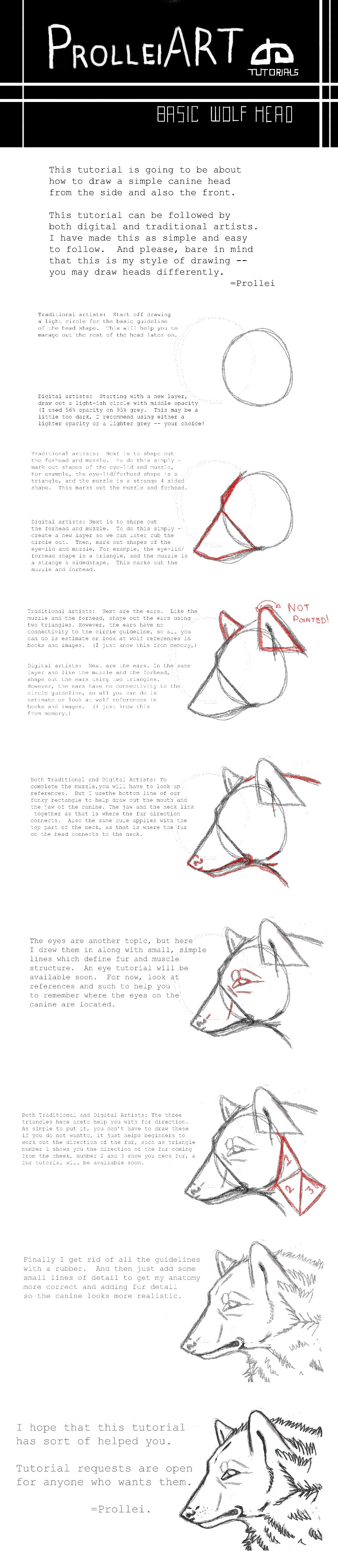 Basic wolf head tutorial by Prollei