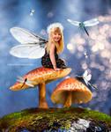 fairy dragonfly