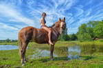 on a horse by Lubov2001